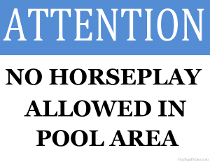 No Horseplay Allowed in Pool Area Sign