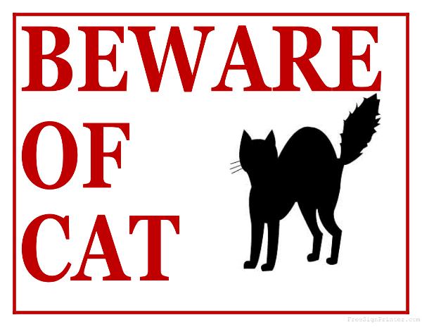 printable beware of cat sign