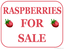 Raspberries For Sale Sign